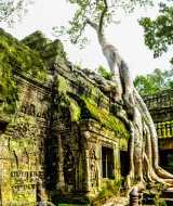 Not so much Tomb Raiders, more like Tomb visitors with camera at Ta Phrom