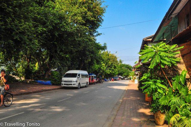 Some more from Luang Prabang street