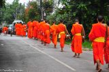 When Tourists Ruin a Good Experience – Luang Prabang's Alms Giving Farce