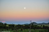 Photo of the Week: (Not so) Bad Moon Rising